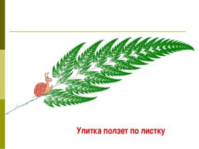 Улитка ползет по листку