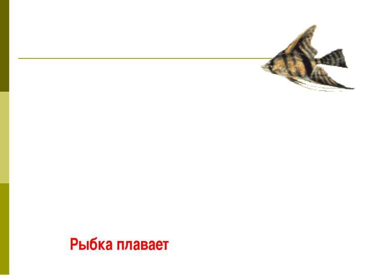 Рыбка плавает
