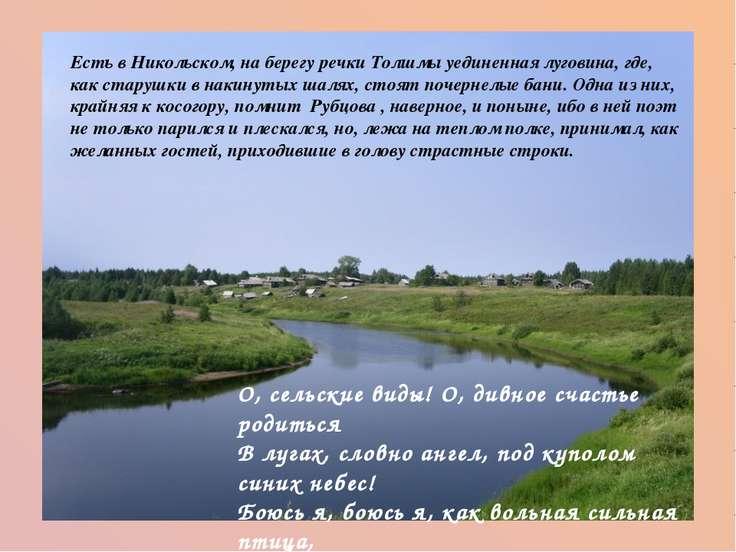 Есть в Никольском, на берегу речки Толшмы уединенная луговина, где, как стару...