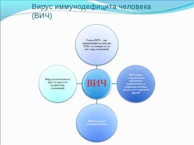 Вирус иммунодефицита человека (ВИЧ)