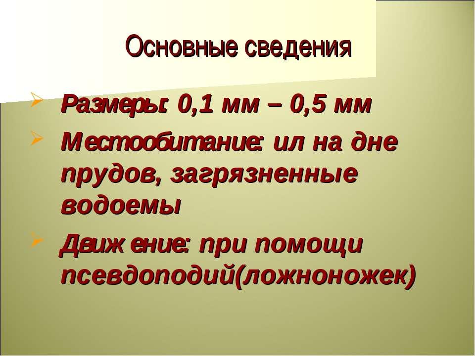 Основные сведения Размеры: 0,1 мм – 0,5 мм Местообитание: ил на дне прудов, з...