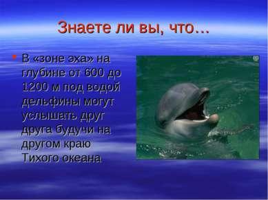 Знаете ли вы, что… В «зоне эха» на глубине от 600 до 1200 м под водой дельфин...