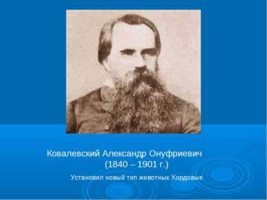 Ковалевский Александр Онуфриевич (1840 – 1901 г.) Установил новый тип животны...