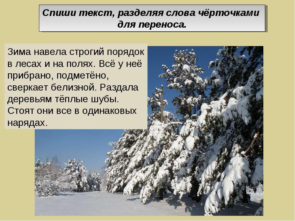 Зима навела строгий порядок в лесах и на полях. Всё у неё прибрано, подметёно...