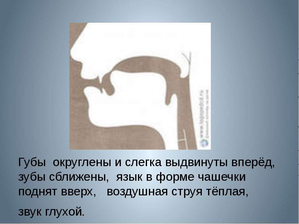 Губы округлены и слегка выдвинуты вперёд, зубы сближены, язык в форме чашечки...