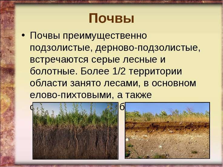 Почвы Почвы преимущественно подзолистые, дерново-подзолистые, встречаются сер...
