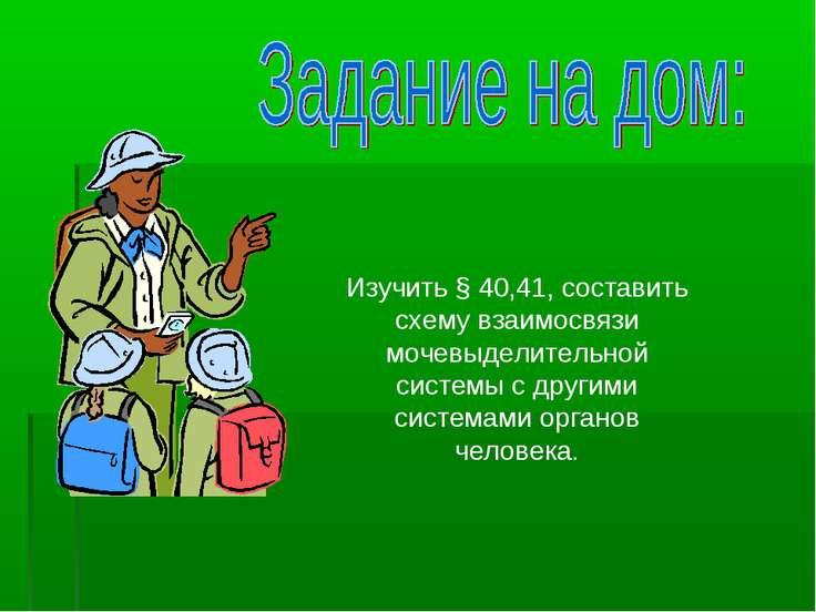 Изучить § 40,41, составить схему взаимосвязи мочевыделительной системы с друг...