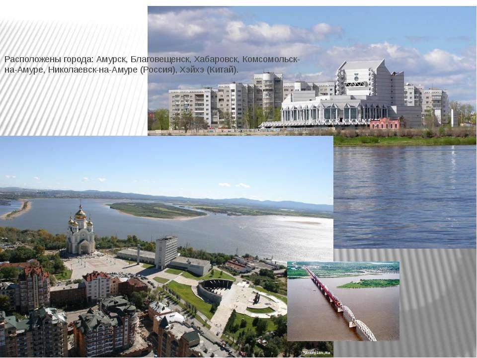 Расположены города: Амурск, Благовещенск, Хабаровск, Комсомольск-на-Амуре, Ни...