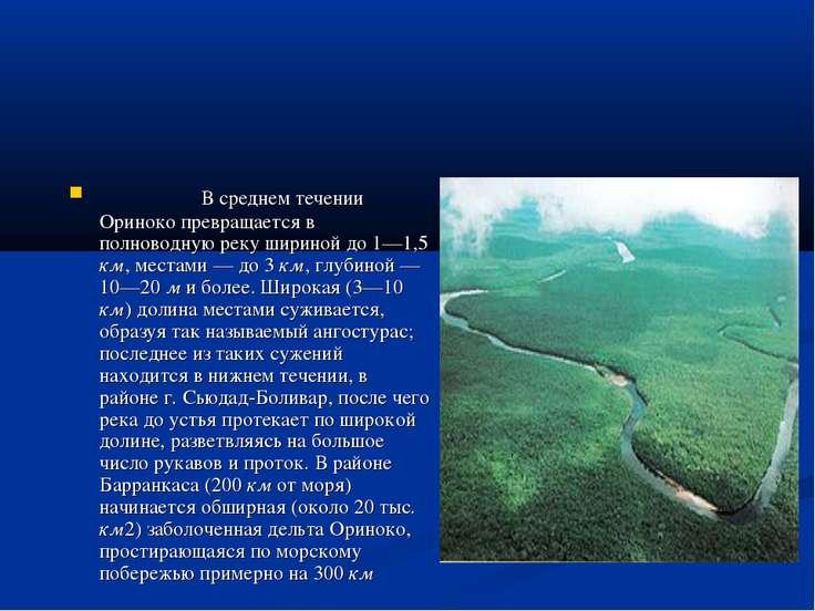 В среднем течении Ориноко превращается в полноводную реку шириной до 1—1,5 км...