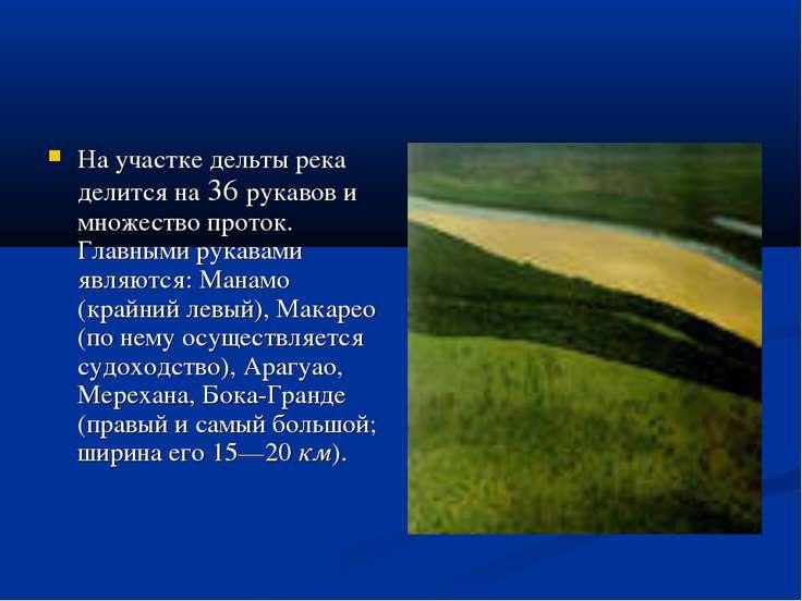 На участке дельты река делится на 36 рукавов и множество проток. Главными рук...