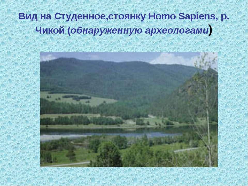 Вид на Студенное,стоянку Homo Sapiens, р. Чикой (обнаруженную археологами)