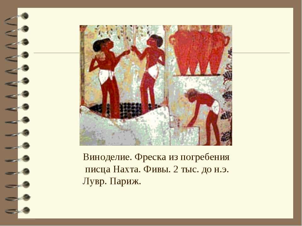 Виноделие. Фреска из погребения писца Нахта. Фивы. 2 тыс. до н.э. Лувр. Париж.