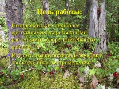 Цель работы: Познакомиться с наиболее доступными лекарственными растениями Се...