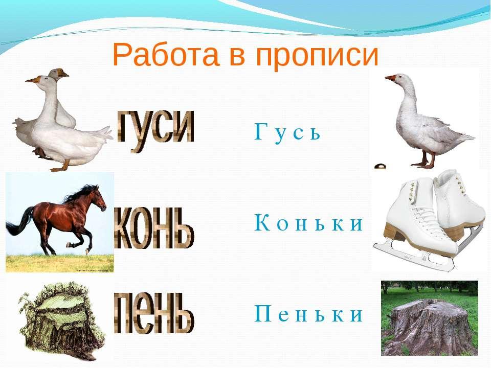Работа в прописи Г у с ь К о н ь к и П е н ь к и