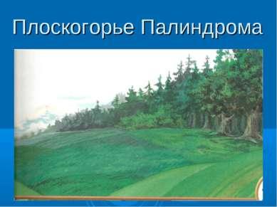 Плоскогорье Палиндрома