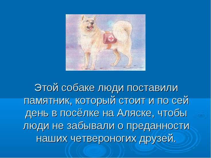 Этой собаке люди поставили памятник, который стоит и по сей день в посёлке на...