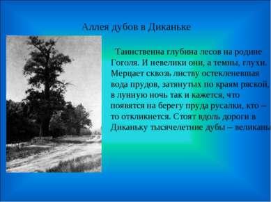 Аллея дубов в Диканьке Таинственна глубина лесов на родине Гоголя. И невелики...