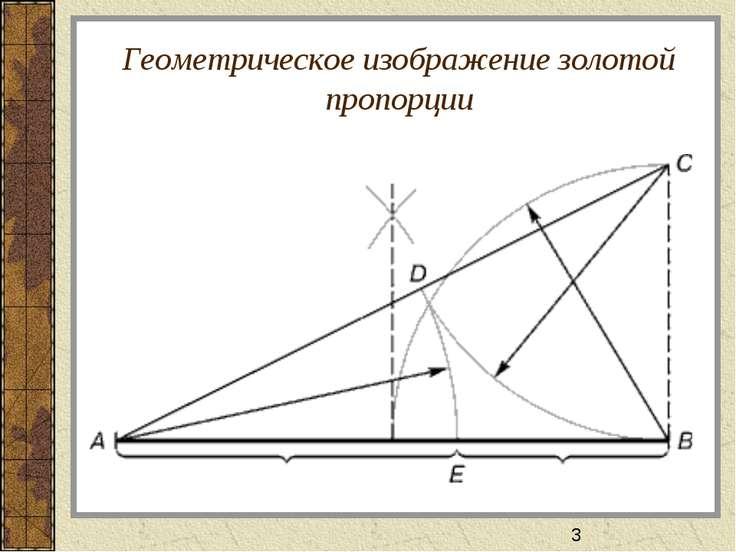 Геометрическое изображение золотой пропорции