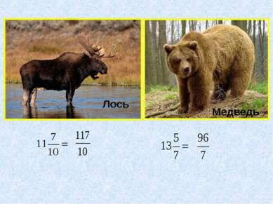 Лось Медведь