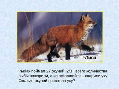 Лиса Рыбак поймал 27 окуней. 2/3 всего количества рыбы пожарили, а из оставше...
