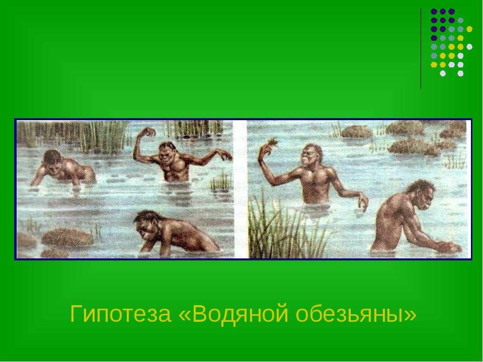 Гипотеза «Водяной обезьяны»