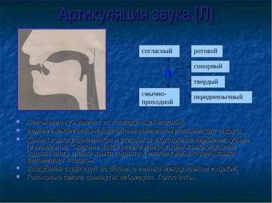 Артикуляция звука [Л] Положение губ зависит от последующих гласных; Верхние и...