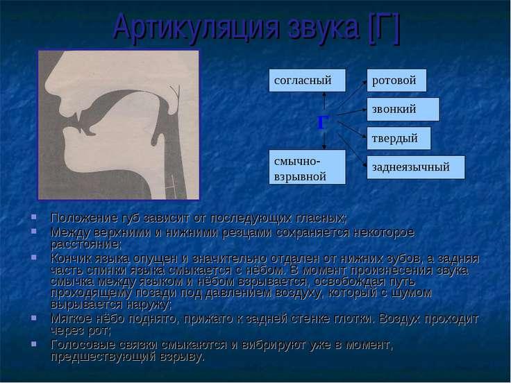 Артикуляция звука [Г] Положение губ зависит от последующих гласных; Между вер...