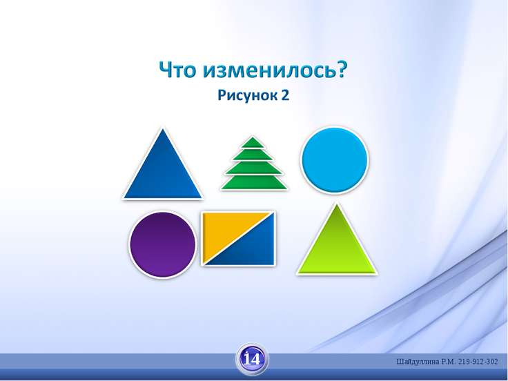 14 Шайдуллина Р.М. 219-912-302