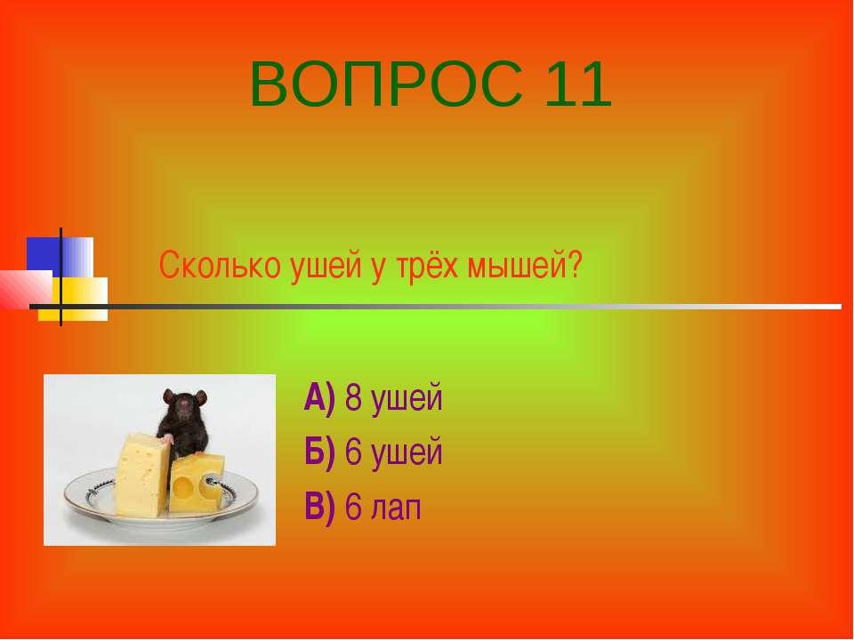 Сколько ушей у трёх мышей? А) 8 ушей Б) 6 ушей В) 6 лап ВОПРОС 11