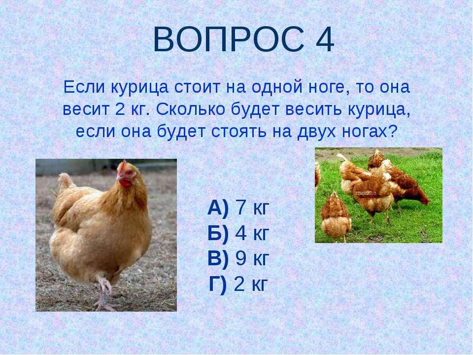 Если курица стоит на одной ноге, то она весит 2 кг. Сколько будет весить кури...