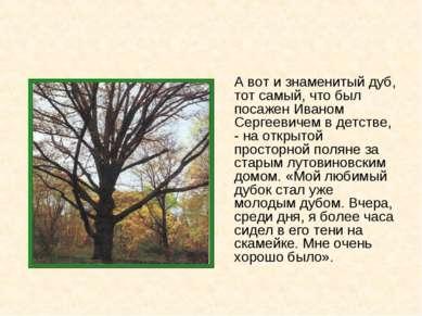 А вот и знаменитый дуб, тот самый, что был посажен Иваном Сергеевичем в детст...