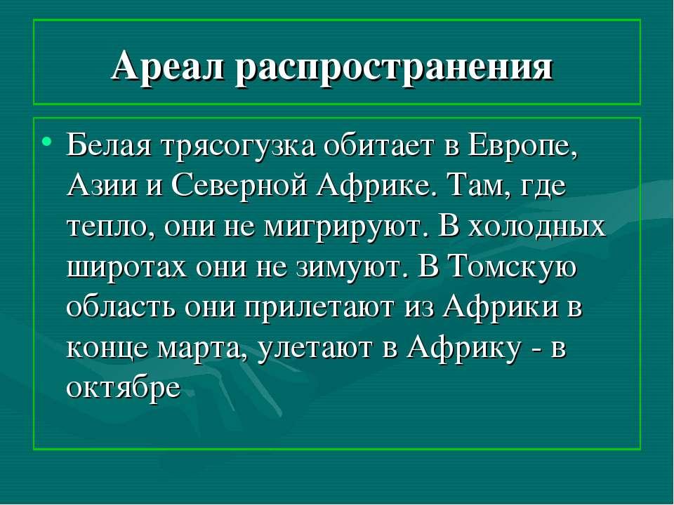 Ареал распространения Белая трясогузка обитает в Европе, Азии и Северной Афри...
