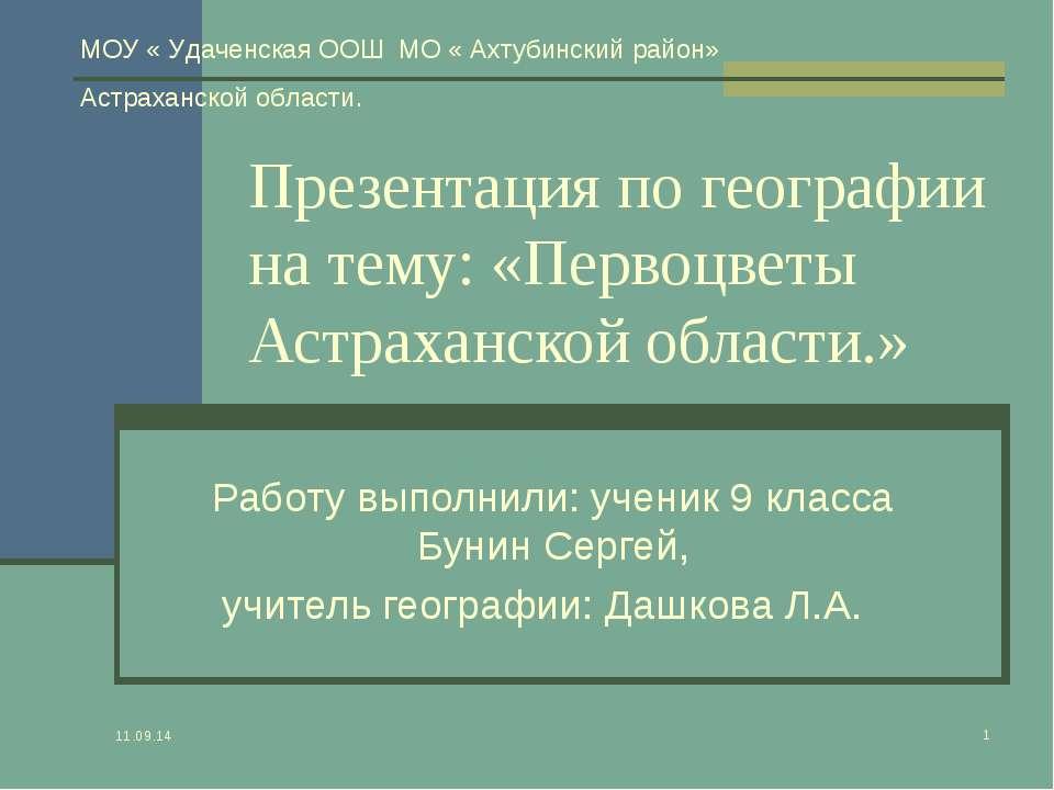 * * Презентация по географии на тему: «Первоцветы Астраханской области.» Рабо...