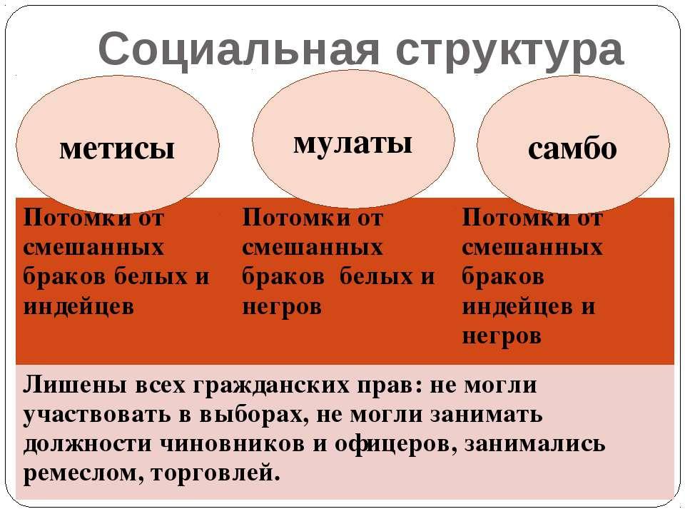 Социальная структура метисы мулаты самбо Потомки от смешанных браков белых и ...