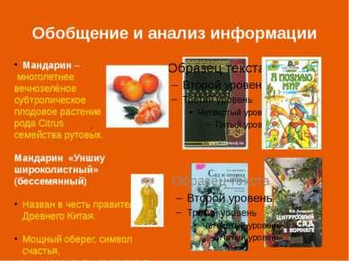 Обобщение и анализ информации