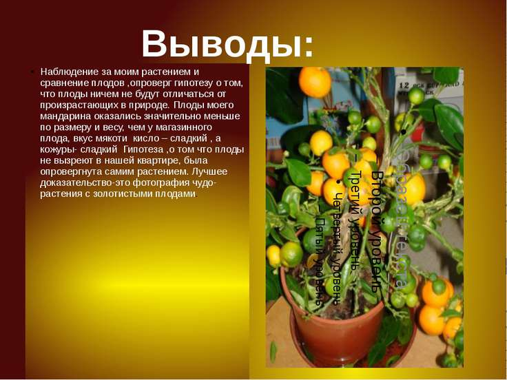 Наблюдение за моим растением и сравнение плодов ,опроверг гипотезу о том, что...