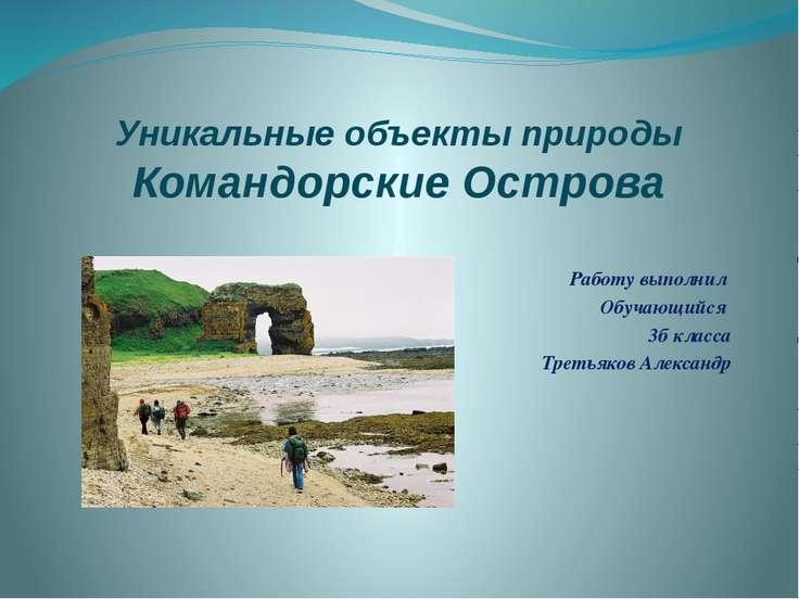 Уникальные объекты природы Командорские Острова Работу выполнил Обучающийся 3...