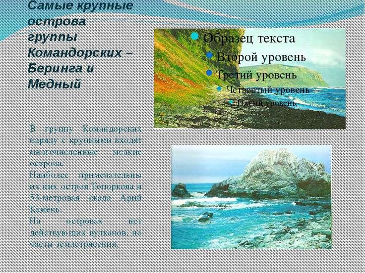 Самые крупные острова группы Командорских – Беринга и Медный В группу Командо...