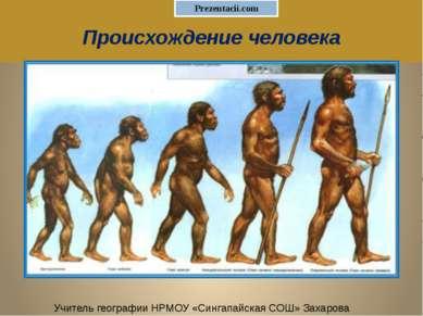 Происхождение человека Учитель географии НРМОУ «Сингапайская СОШ» Захарова Л....