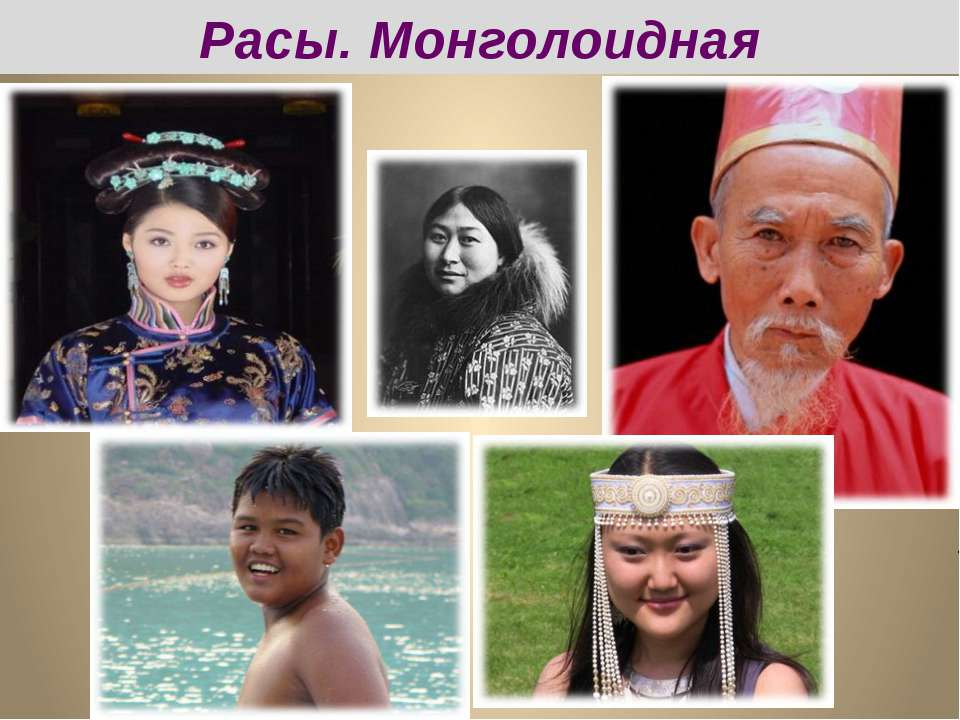 Расы. Монголоидная