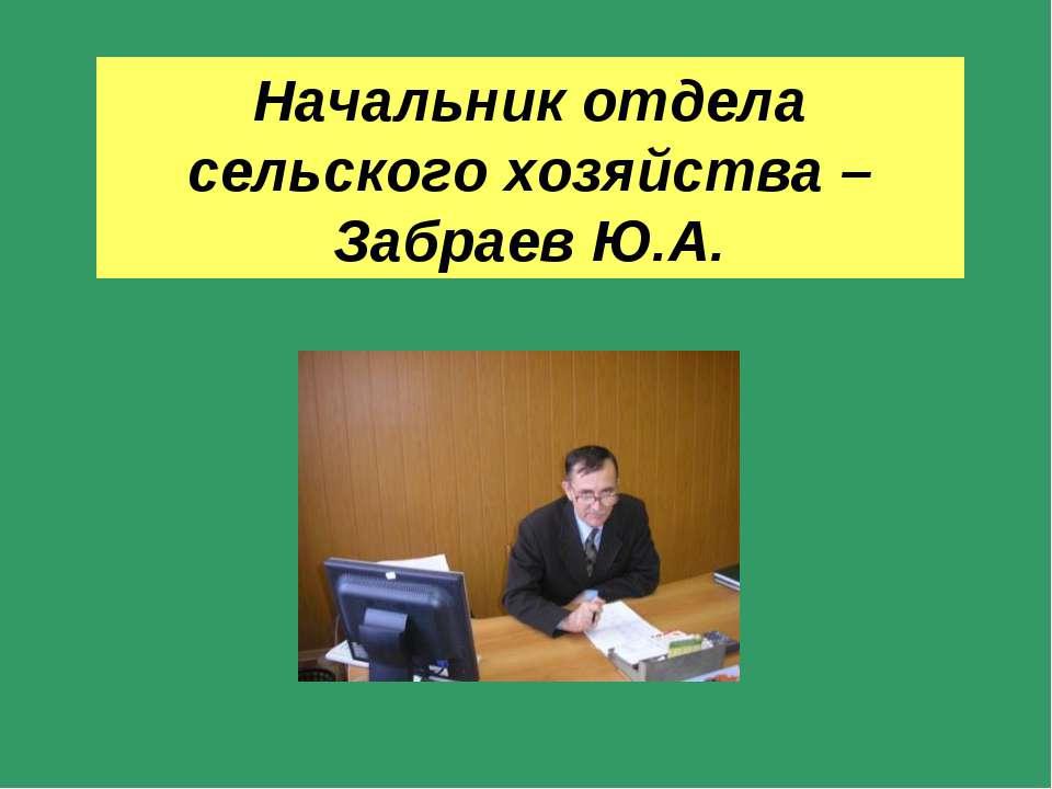 Начальник отдела сельского хозяйства – Забраев Ю.А.