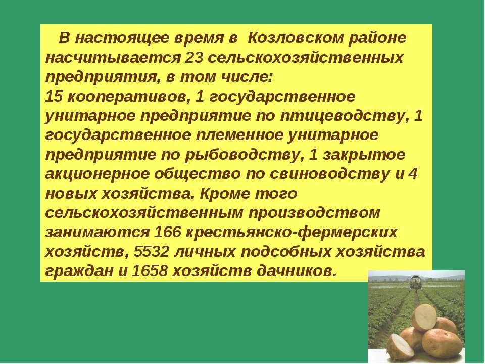 В настоящее время в Козловском районе насчитывается 23 сельскохозяйственных п...