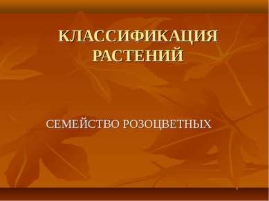 КЛАССИФИКАЦИЯ РАСТЕНИЙ СЕМЕЙСТВО РОЗОЦВЕТНЫХ