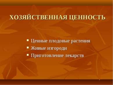 ХОЗЯЙСТВЕННАЯ ЦЕННОСТЬ Ценные плодовые растения Живые изгороди Приготовление ...