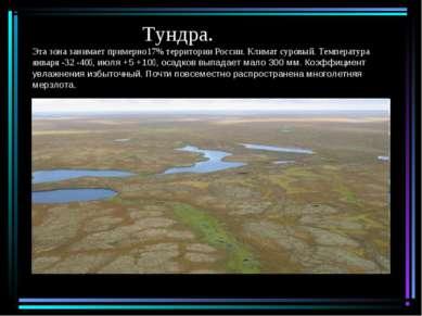 Тундра. Эта зона занимает примерно17% территории России. Климат суровый. Темп...