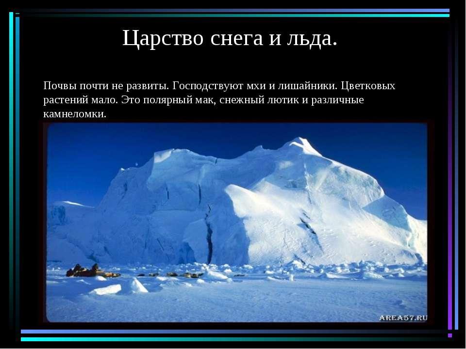 Царство снега и льда. Почвы почти не развиты. Господствуют мхи и лишайники. Ц...