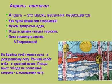Апрель - снегогон Апрель – это месяц весенних первоцветов Как чуток ветки сон...