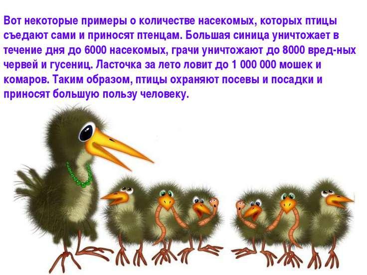 Вот некоторые примеры о количестве насекомых, которых птицы съедают сами и пр...