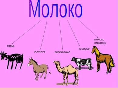 козье ослиное верблюжье коровье молоко кобылиц