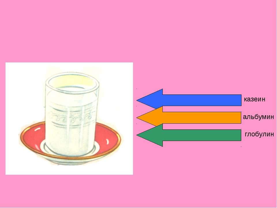 казеин альбумин глобулин
